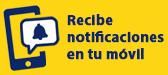 Ja pots rebre notificacions de vols al teu mòbil